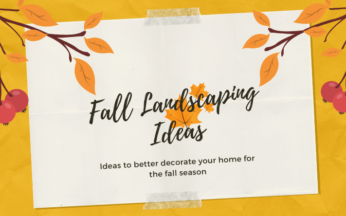 10 Awesome Fall Landscaping Ideas